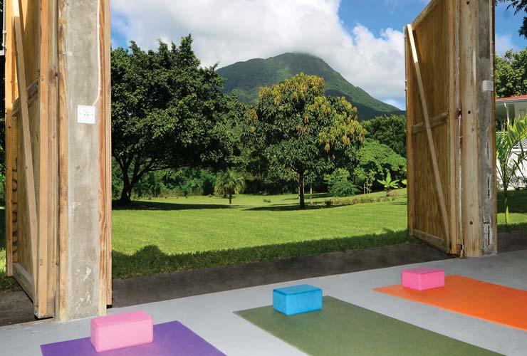 Pilates or yoga classes