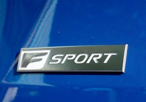 2022 RX350 Black Line sport logo
